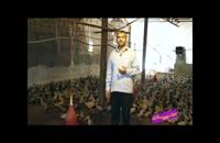 فوت کوزه گری 10 - بسیج سازندگی - پرورش اردک گوشتی