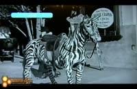 مسافر زمان در قسمتی از فیلم چارلی چاپلین