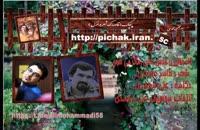 گاه وقتی در قفس باشی رهاتر می شوی  : شعر حامد عسکری با صدای علی محمدی