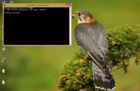 آموزش از بین بردن ویروس shortcut فلش مموری