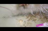 فوت کوزه گری 9 - بسیج سازندگی - پرورش ماهی گرم آبی