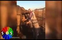 نوشیدن ادرار شتر سنتی از وهابی های سعودی
