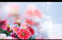 طرح ساده ی یک گل : اشعار منصور خورشیدی با خوانش اصغر معینی