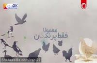 بیماری آنفولانزا در پرندگان