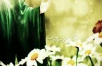 نماهنگ زيباي اميرمومنان عليه السلام با صداي حامد زماني