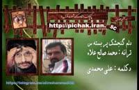 دلم گنجشك پر بسته س : ترانه  محمد صالح علاء دکلمه : علی محمدی