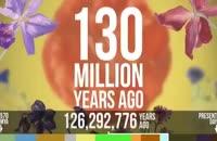 تکامل تمام موجودات و شروع زندگی بر روی کره زمین 570 میلیون سال پیش تا اکنون 2