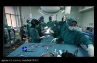 دردناک ترین عمل جراحی زیبایی برای حیوانات بی گناه در ایران