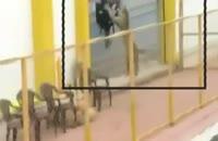 ورود پلنگ وحشی به مدرسه در هند !!!